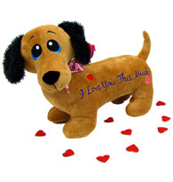 Valentine Dachshund - I Love you this much